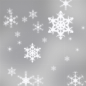 A chance of snow showers. Mostly cloudy, with a high near 13.